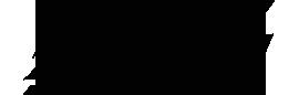 bg worldwheels logo